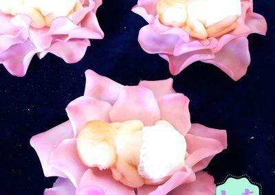 rosas20170523_141304